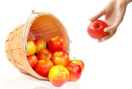 producteur-fruits-frais