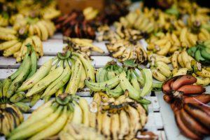 Différentes variétés de bananes sur un étal de fruits tropicaux