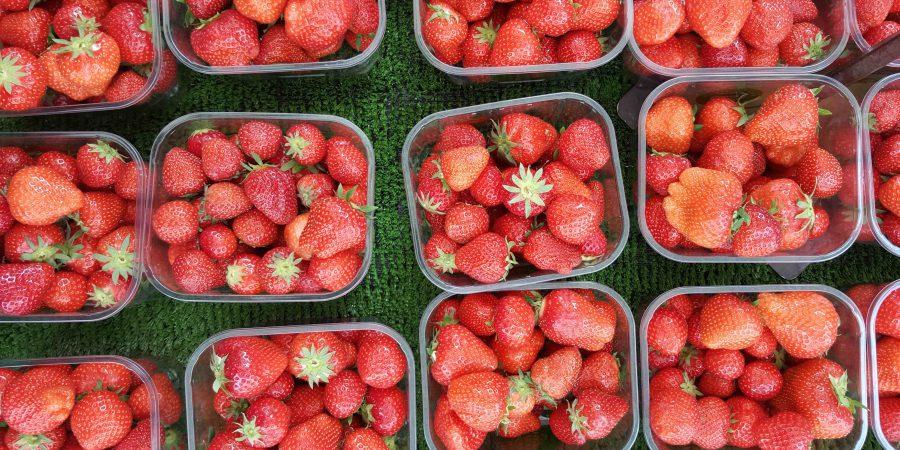 Des fraises dans des barquettes en plastique sur un étal